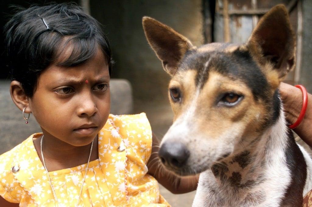 你覺得印度少女嫁狗很「變態」,是否外國人也覺得你喝符水治病很「愚蠢」?