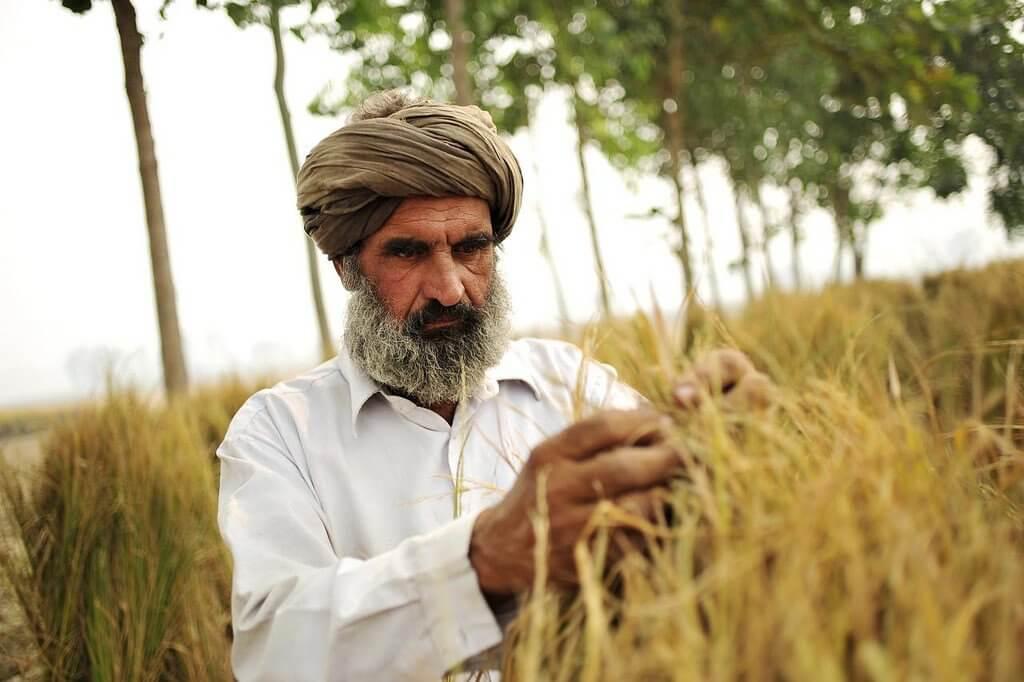 寶萊塢大明星幫你還債!印度農民困境受矚目