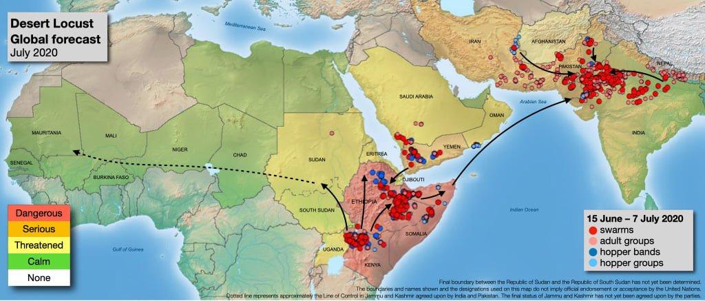 蟲蟲危機2:蝗災惡夢,東非、中東、南亞全淪陷