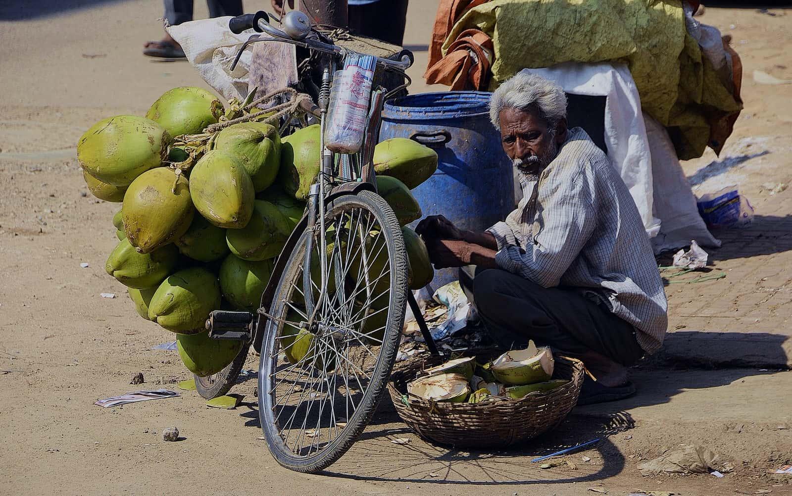 樹蔭都到哪去了?印度街頭攤販消失中的「遮蔭權」