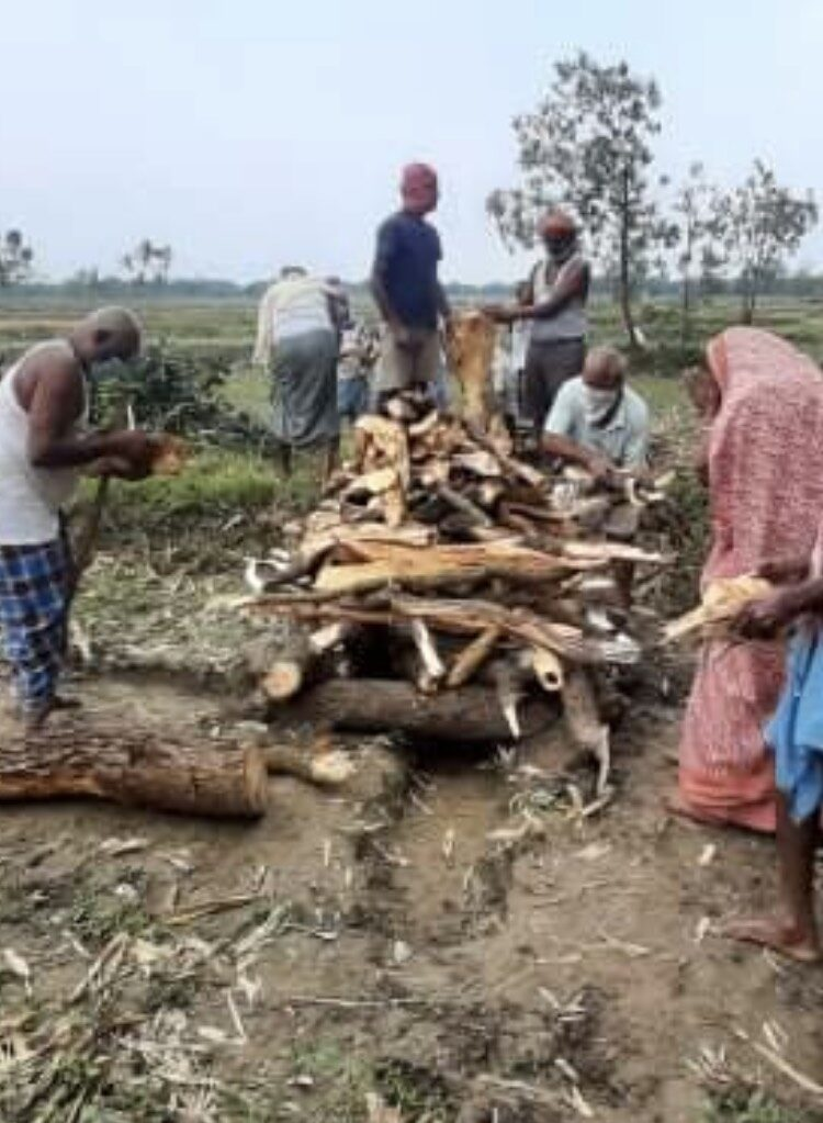 印度疫情:暫別卻是永別,我在印度最深的牽掛 Dadi Maa(奶奶)